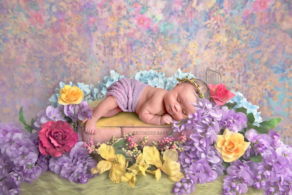 Alexandria Brookside Baby 102